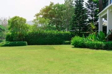 Les prestations de votre jardinier paysagiste à Taillant