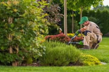 Entretien de jardin ponctuel du côté de Taillant
